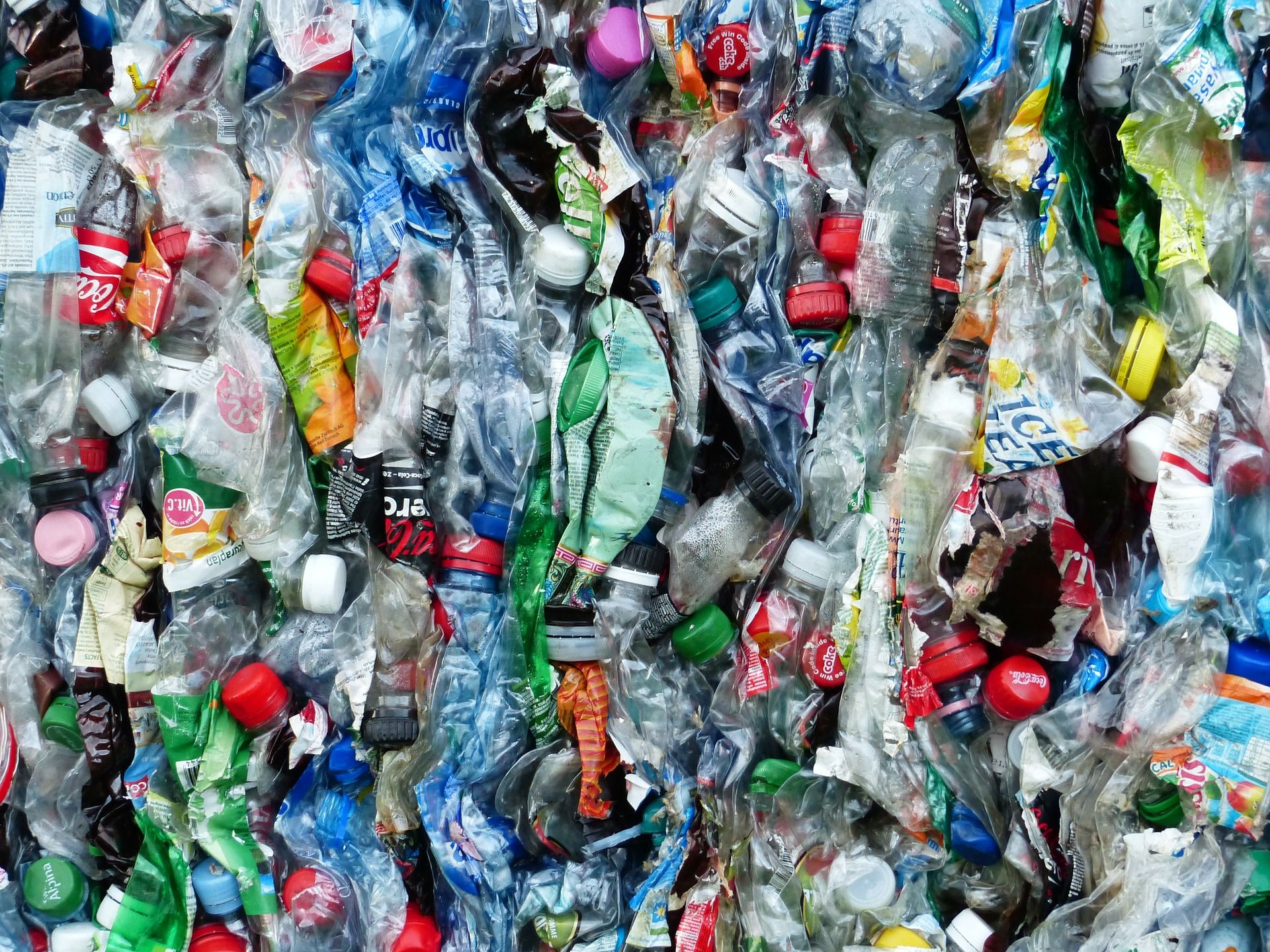 Lieven Scheire over eiwitten die plastic afbreken