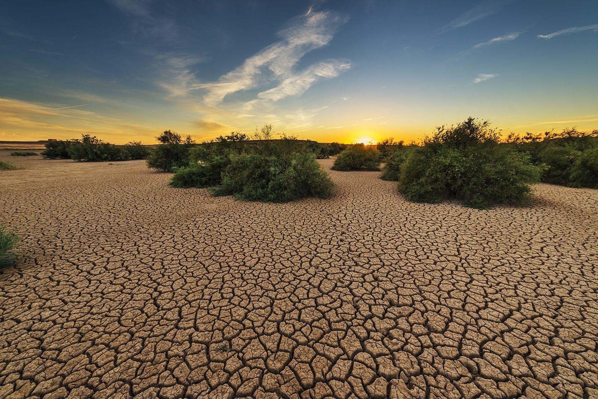 Helga van Leur vertelt alles over de droogte in Nederland