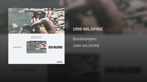 1999 WILDFIRE