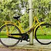 Steeds meer 70 plussers overlijden door een fietsongeluk