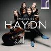 19:30 Hollandsche Nieuwe! Haydn, op.20 door Dudok Kwartet/V