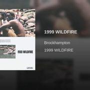 1999 Wildfire