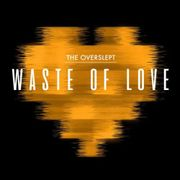 Waste Of Love