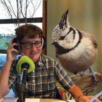 Vroege Vogels Radio | 12 september 2021