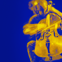 <strong>Cello Biënnale 2020<br></strong>De Cello Biënnale Amsterdam is een tien dagen durend internationaal muziekfestival rondom de cello. Met meer dan 100 evenementen in het Muziekgebouw aan 't IJ is de Cello Biënnale Amsterdam de ontmoetingsplaats en bron van inspiratie voor cellisten en muziekliefhebbers uit de hele wereld. Vanwege de maatregelen tegen de verspreiding van Corona vindt het festival dit keer online plaats met in de programmering cellisten uit Nederland.<br><br>Gedurende de dag zijn de concerten live te volgen via een livestream. Het Avondconcert komt live vanuit het Muziekgebouw aan het IJ waar we het concert van die avond live uitzenden, gevolgd door opnames die eerder tijdens het festival zijn gemaakt.<br>