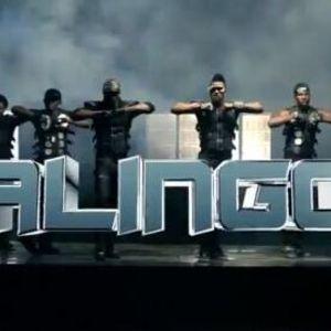 Alingo