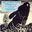 Album cover Bright Eyes van Art Garfunkel