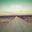 Album cover Can't Hold Us van Macklemore & Ryan Lewis ft. Ray Dalton