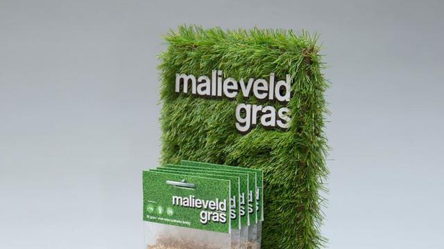 malieveld_mixdown