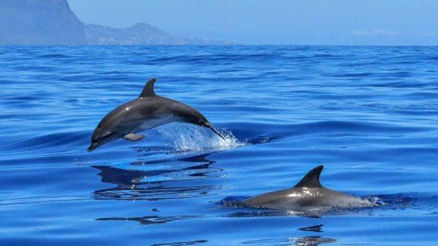 Groetjes uit .... Gran Canaria