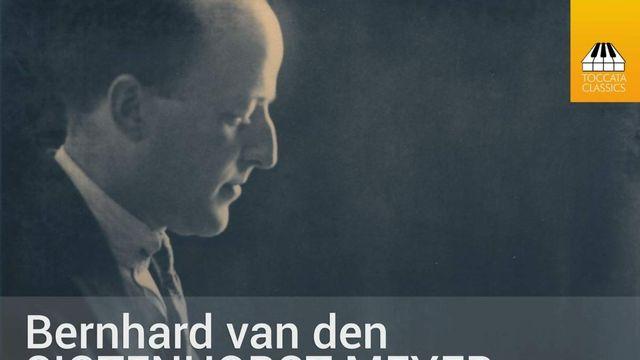 Hollandse Nieuwe! Sigtenhorst Meyer door Albert Brussee, deel 1