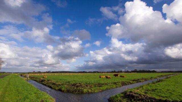 Gedicht: Tussen wolken en aarde de tekens, van Willem van Toorn