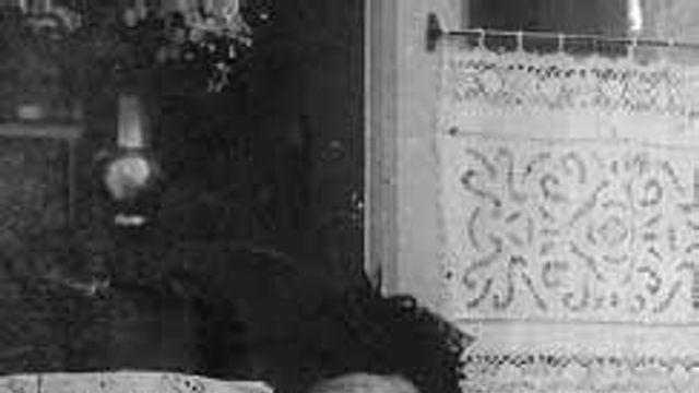 Gedicht: Moeder van Elsschot