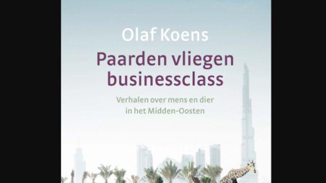 Het gesprek - Olaf Koens