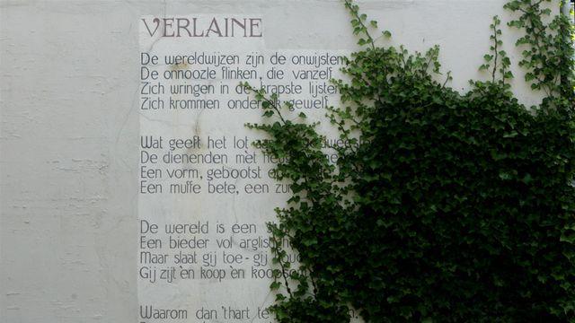 poezie 7 feb