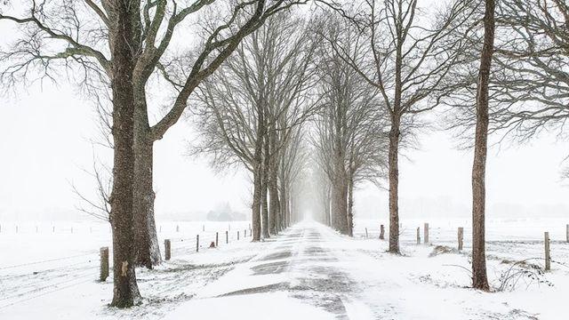 Gedicht: De winter staat stil