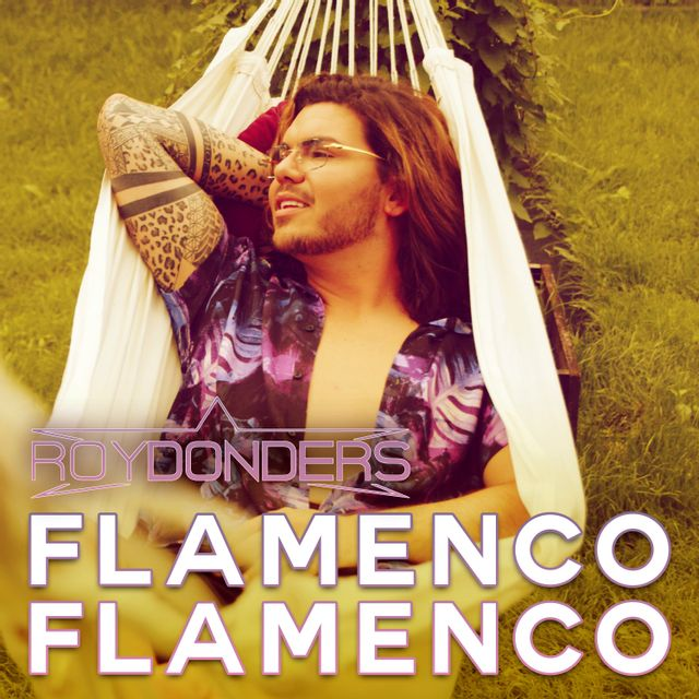 Flamenco Flamenco - Roy Donders